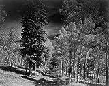 USA Colorado Rocky Mountains Landscape Poster Drucken
