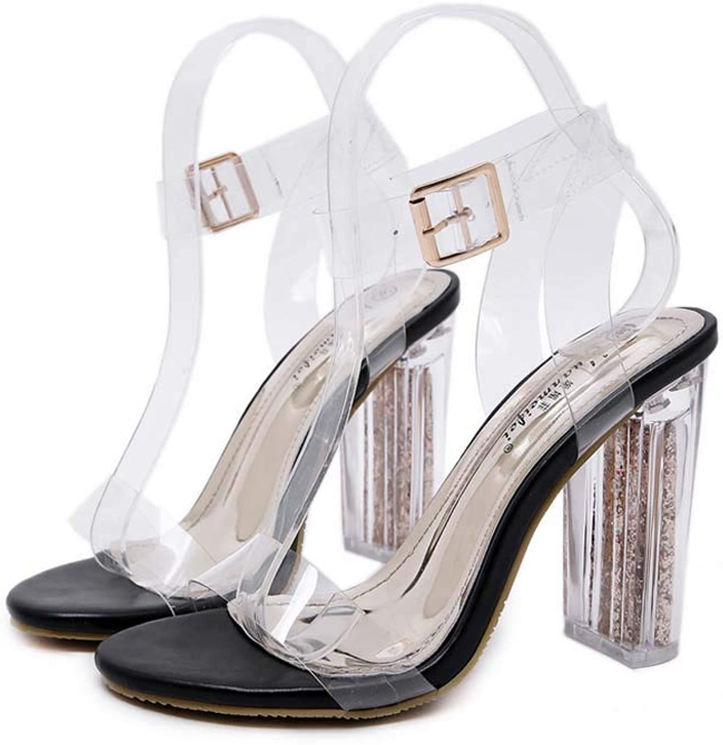 Women Lucite Clear Ankle Strap Sandals,Adjustable Buckle Block Chunky Perspex Open Toe High Heels,Transparent Dress shoes