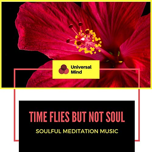 Time Flies But Not Soul - Soulful Meditation Music
