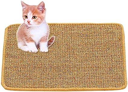 chat arabe gratuit sans inscription)