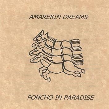Amarekin Dreams