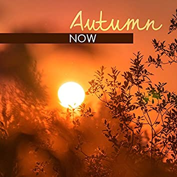Autumn Now – Jazz Music for Relax After Work, Long Evenings, Instrumental Jazz