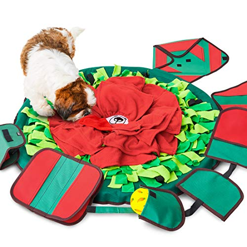 5. SNiFFiz SmellyMatty Snuffle Mat for Dogs