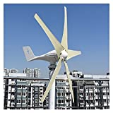 Turbina de viento al aire libre 3000W 5 Blades Energía libre Molino de viento 12V 24V 48V Energía eólica Pequeño Generador de Turbinas de Viento Generador MPPT Controlador para uso en el hogar para en