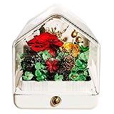WZJHY Künstliche Rosen Blumen, Bluetooth-Lautsprecher LED-Nachtlicht Echte Verzauberte Rosen Für...