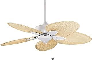 fanimation windpointe ceiling fan