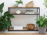 Weston Crafts Dark Brown Black Metal Frame 3-Tier Console Table Bookcase Bookshelf Metal Planter Stand Indoor Living Room More décor Black Stand Wood Shelves