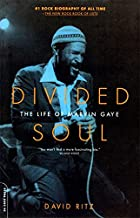 marvin gaye book