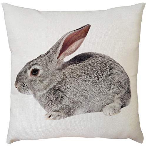 Celucke Easter Day Rabbit Bunnies Patterned Decorative Throw Pillow Covers, Cotton Linen Square Pillowcases for Sofa Couch Car Bedroom Home Decor