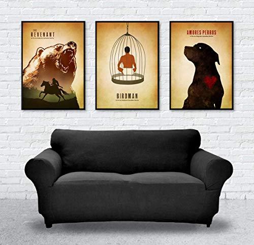 Alejandro González Iñárritu Minimalist Movie Poster Set, Artwork Print, The Revenant, Birdman and Amores Perros, Unframed Print, Office Decor, Home Decor, Wall Hanging, Cafe Decor