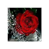 Tiannuan 5D Roja Rose Floral Stick DIY Cristal Floral Art Needlework Home Office Stickerei-Diamant-Malerei