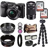 Sony Alpha a6000 Mirrorless Digital Camera 2 Lens Kit (SELP1650 + SEL55210B) & Havan Camera Case 64GB Kit