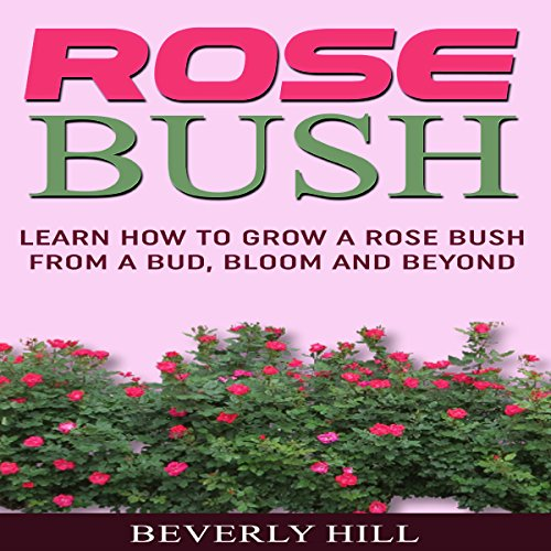 Rose Bush: Learn How to Grow a Rose Bush from a Bud, Bloom or Beyond audiobook cover art