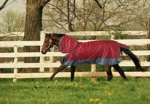 Turnout 1680D Horse Winter Waterproof with Neck Cover - Horse Blanket 001 - Size from 69' to 83' (78')