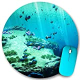 KGSPK Gaming Mouse Pad,Ocean Fish Photography,7.9'x7.9' inch Non Slip Rubber Round Mouse mat Desk Decor for Office Home Computer PC latop
