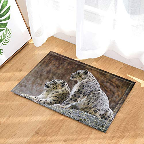 SHUHUI Il y a 2 léopards à Points Noirs sur la Roche Brune. Léopard Femelle Enceinte Tapis de Sol imperméables, antidérapants et sans Produits Chimiques