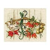 Riolis 1794 - Kit de punto de cruz (algodón, 30 x 24 cm), diseño de especias