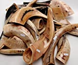 Immagine 1 autentico shofar lucidato di alta
