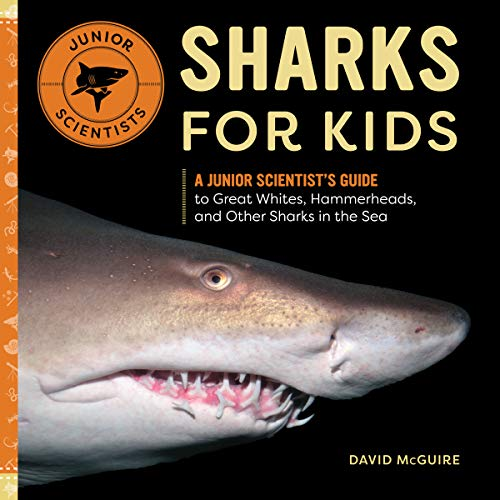 Sharks for Kids: A Junior Scientist's Guide to Great Whites, Hammerheads, and Other Sharks in the Sea