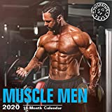 2020 Muscle Men Wall Calendar by Bright Day, 16 Month 12 x 12 Inch, Hot Sexy Guys Working Out