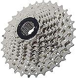 Generic N/A Cassette de 9 velocidades 11 – 32T para bicicleta, 9 velocidades, piñón de velocidad, accesorio de repuesto para bicicleta de montaña, bicicleta de carretera, bicicleta plegable
