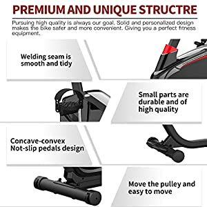 Recumbent Exercise Bike for Seniors 350 LBS Capacity with Magnetic Resistance Indoor Cycling Bike Stationary with iPad Holder for Home Gym Cardio Workout
