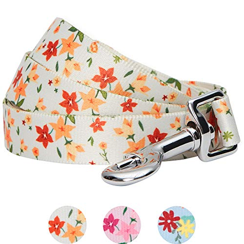 Amazon Brand - Umi Made Well Laisse Robuste pour Chien, Taille S, 150 x 1,5 cm, Motif Floral, Ivoire