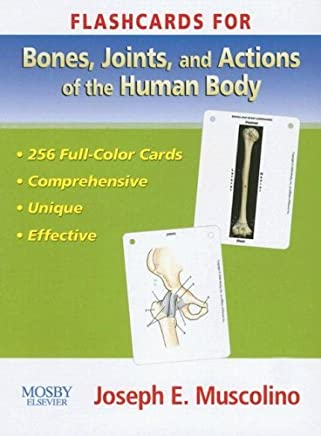 Flashcards for Bones, Joints and Actions of the Human Body by Joseph E. Muscolino DC (30-Jun-2006) Cards