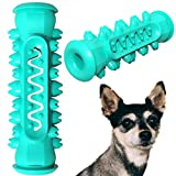 Small Dog Dental Toy