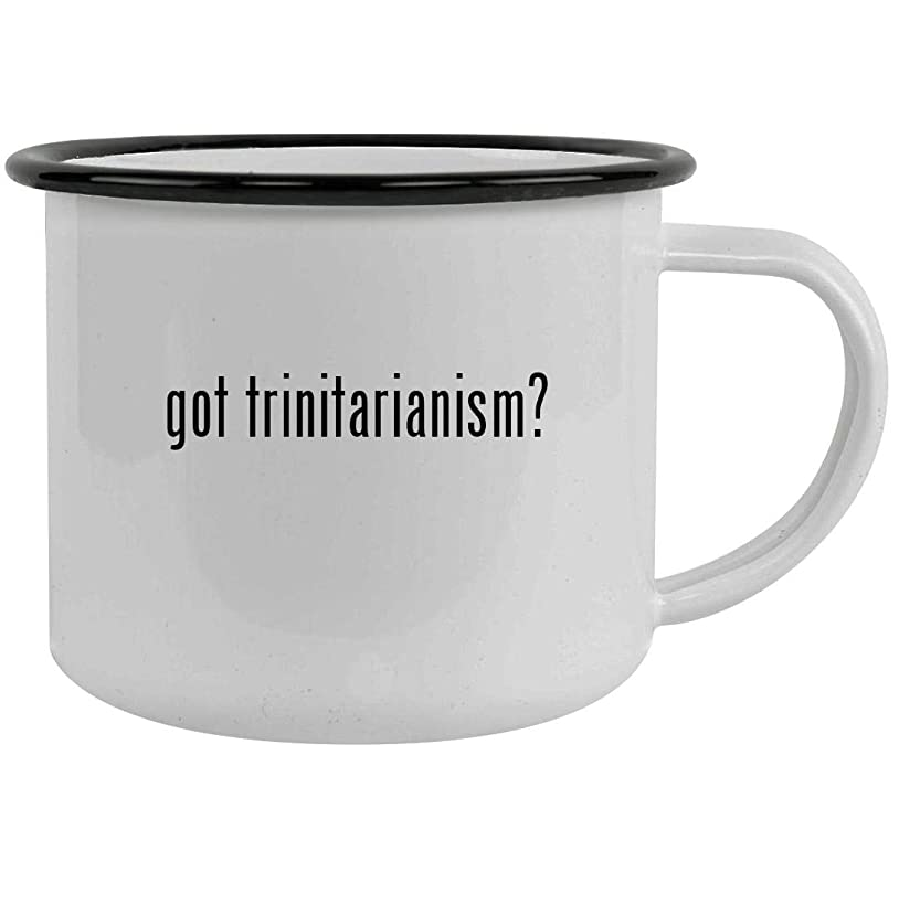 got trinitarianism? - 12oz Stainless Steel Camping Mug, Black