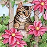 5D Diamond Painting Kit Full Drill Cat Diamond Puzzles for Adults DIY Rhinestone Embroidery Easy Cross Stitch kits Arts Craft for Home Wall Decor 30x30 cm