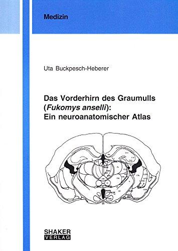 Das Vorderhirn des Graumulls (Fukomys anselli): Ein neuroanatomischer Atlas (Berichte aus der Medizin)