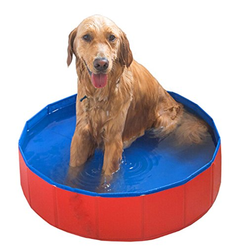 Meiying Bañera Plegable Grande de la Piscina del Animal doméstico del Perro