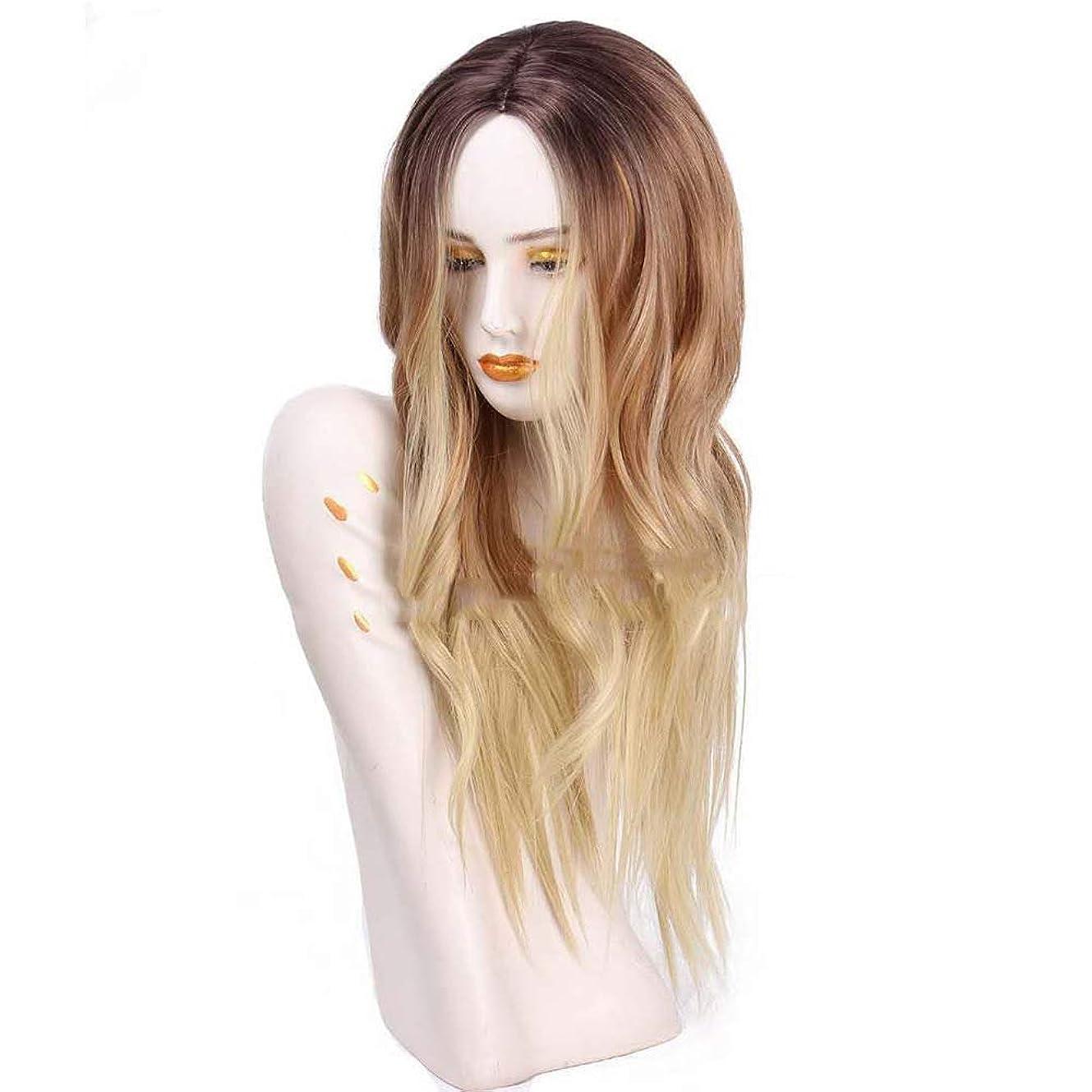 騙すエントリ不合格耐熱合成かつらグラデーションゴールド65 cm用の長い波状のかつら女性のかつら