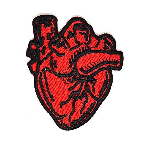 Posterior anterior (Pa) radiografía de Tórax anatómico corazón | bordado alta calidad Iron on parche bordado para coser en insignias para ropa chaquetas camisetas abrigos bolsas sombreros Wallets