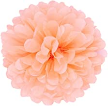 JZK 10PCS x 10 inch 25 cm Coral Tissue pom poms Pompoms Decorations Accessories for Wedding Birthday Baby Shower holy Communion Graduation Baptism Party Christmas Halloween Hanging Paper Flower Balls