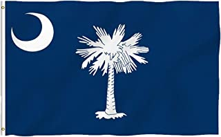 Oniche South Carolina Flag 3x5 Ft South Carolina State Polyester Flag Vivid Color and UV Fade Resistant SC Flags with Brass Grommets(South Carolina Flag)