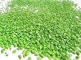 Ghisi Walter Sabbia Granulare, Verde, 1 kg