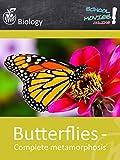 Butterflies - Complete metamorphosis - School Movie on Biology