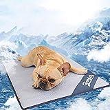 Warmiehomy Kühlmatte für Hunde Katze Haustiere kühlkissen Hundematten für innen-& drauß Raum im Sommer 100 cm x 70 cm(Blau)