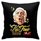 IUBBKI RIC Flair Throw Pillow Fundas de cojín 18x18 Pulgadas, Fundas de Almohada para sofá, Dormitorio, Coche, Vaquero