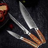 Juego de cuchillos Damasco Cuchillo de cocina VG10 Alto Carbono Acero inoxidable Profesional Chef Cuchillo Bloqueo Slicar Utility Cleaver (Color : 3 PCS Value Set)
