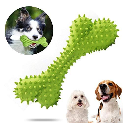 Sunshine smile Kauspielzeug Hund, Hundezahnbürste Hunde, Hundespielzeug Knochen, Hundezahnbürste Kauspielzeug, Zahnreinigung Hund Spielzeug, Interaktives Spielzeug Für Hunde (Grün)