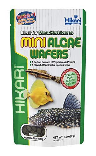 HIKARI M138197 Mini Algae Wafers 85G, 1000 ml