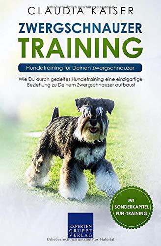 Zwergschnauzer Training: Hundetraining für Deinen Zwergschnauzer