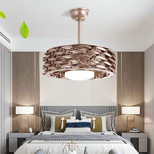 Ceiling Fan Plafondventilator, zonder lemmet 22 inch, met dimbare lamp met deuk- en machine-timer, omkeerbare motor, 6 snelheden