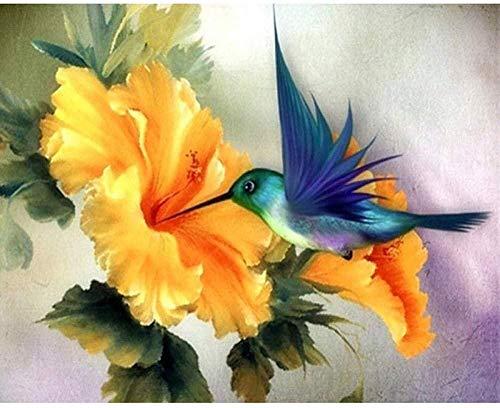 Jkykpp Schilderij op nummer, vogelplukken, honing, bluebird, doe-het-zelf, digitaal olieverfschilderij, Home Decor Art Gift 40 x 50 cm (16 x 20 inch)