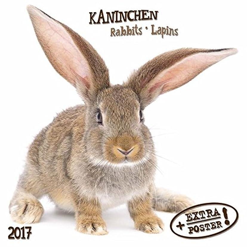 献身極小大気Kaninchen - Rabbits - Lapins 2017 Artwork