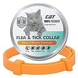 ZITFRI Collar Antiparasitos Gato 62cm Ajustable, Collares...