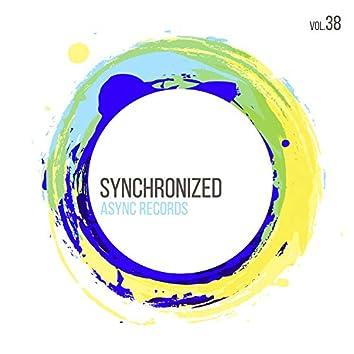 Synchronized Vol.38